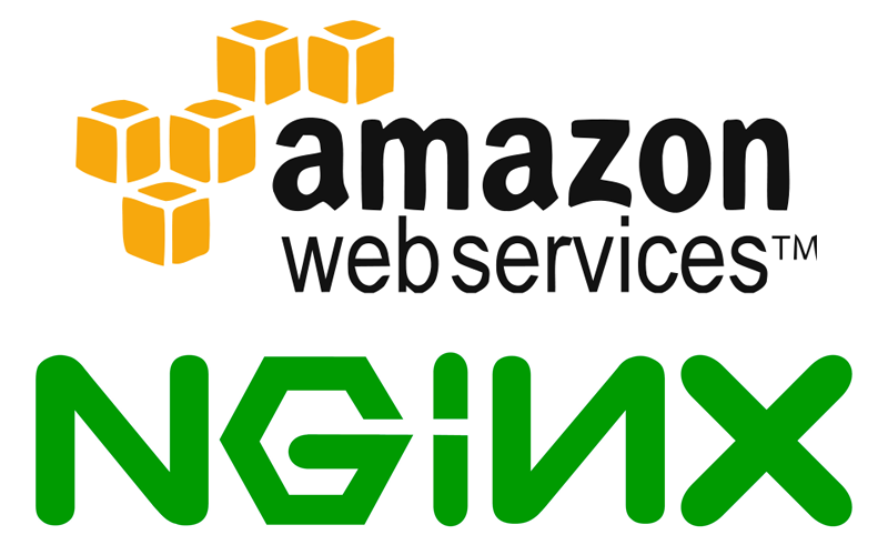 Build and Install Nginx from source on Amazon EC2 Linux